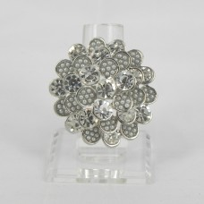 517309 Clear in Silver Ring