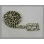 581003-101 Crystal Silver Belt